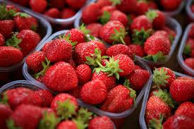 ravier fraises